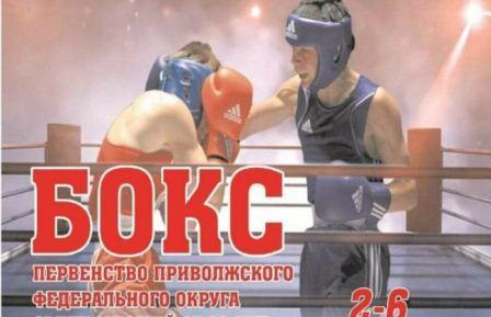 Первенство ПФО среди юношей 15-16 лет по боксу