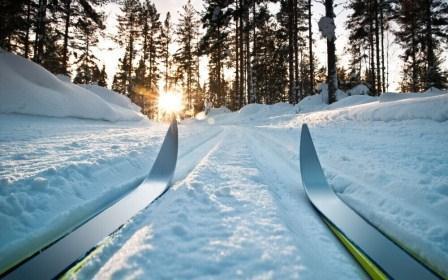 Всероссийские соревнования среди студентов по лыжным гонкам