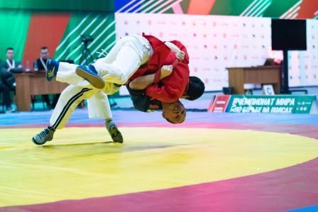 XVIII чемпионат мира по борьбе на поясах