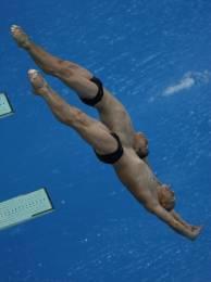 Этап Мировой серии FINA по прыжкам в воду